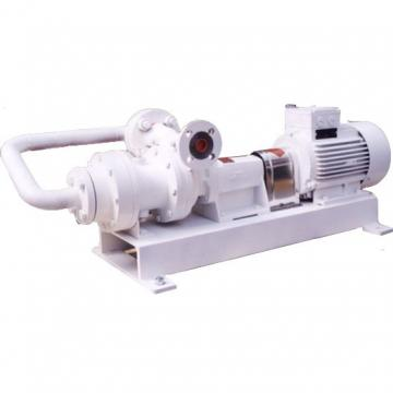 Vickers PV046L1E1BCNFPRX5927+PV023L1E1 Piston Pump PV Series